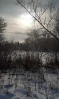 Winter Phönix 1